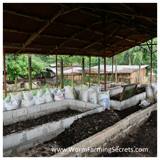 50 Square Meters Of Worm Composting Beds Producing 11k Liters Of Worm Poo Every 45 Days...